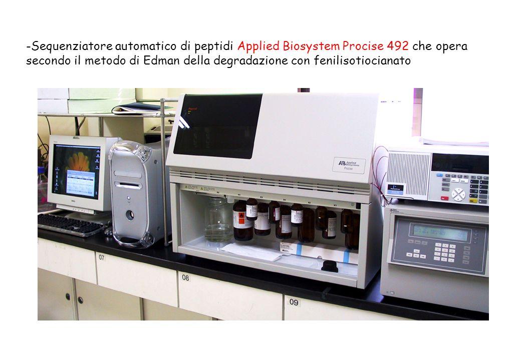 Sequenziatore automatico di peptidi Applied Biosystem Procise 492 che opera secondo il metodo di Edman della degradazione con fenilisotiocianato