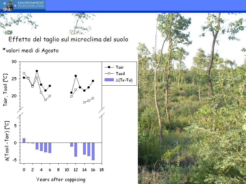 Effetto del taglio sul microclima del suolo