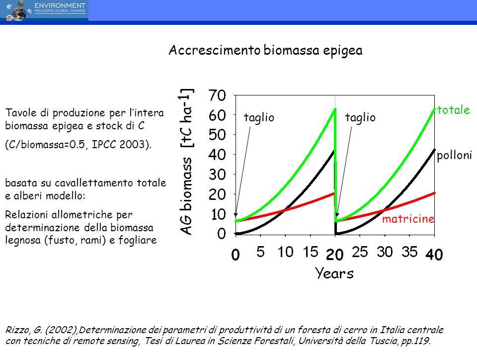 Accrescimento biomassa epigea