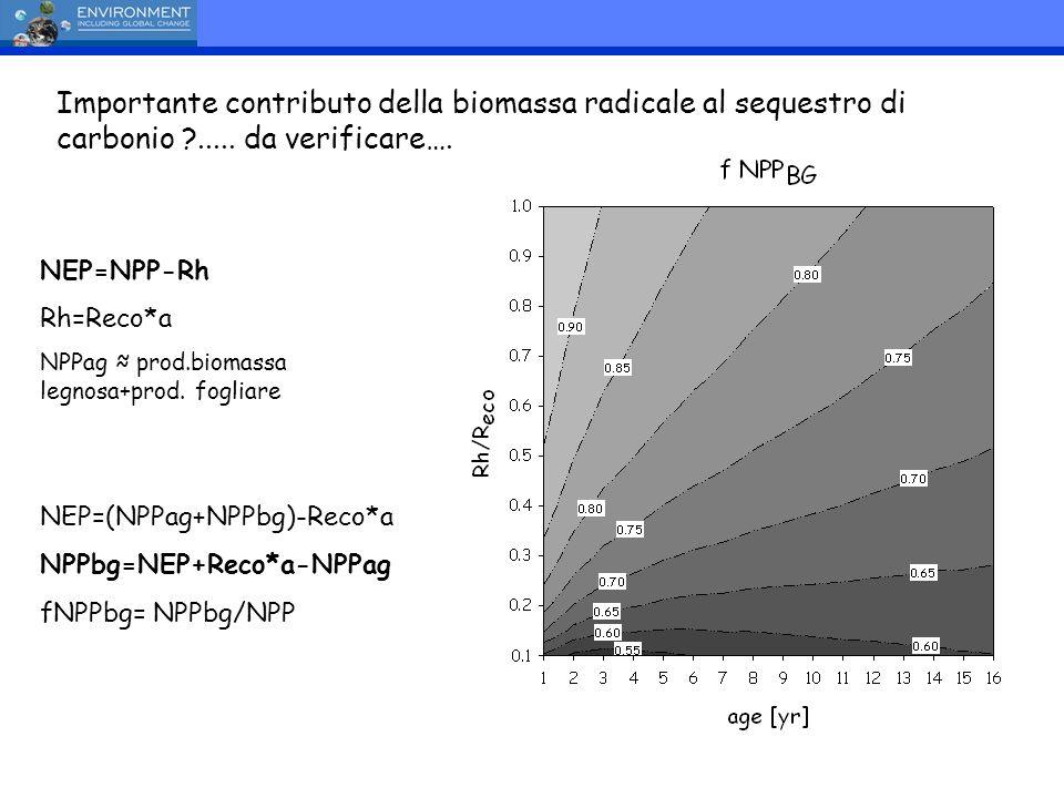 Importante contributo della biomassa radicale al sequestro di carbonio