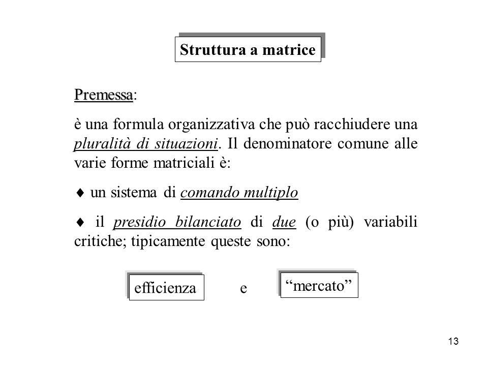 Struttura a matrice Premessa: