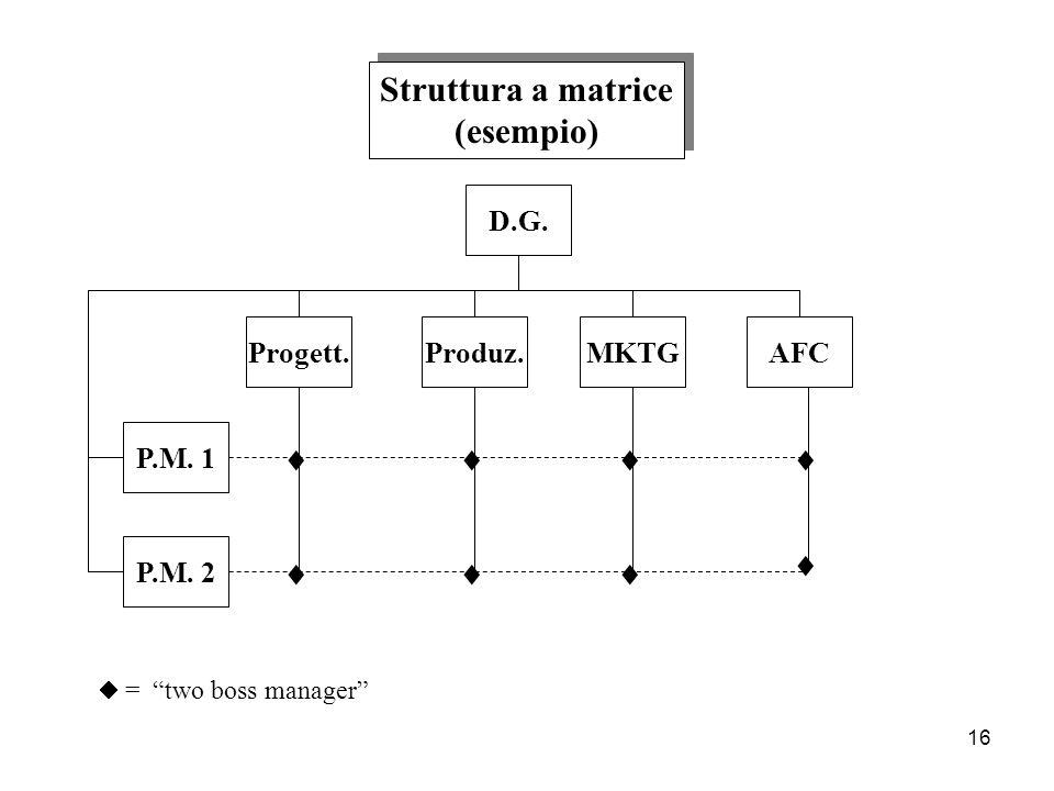 Struttura a matrice (esempio)