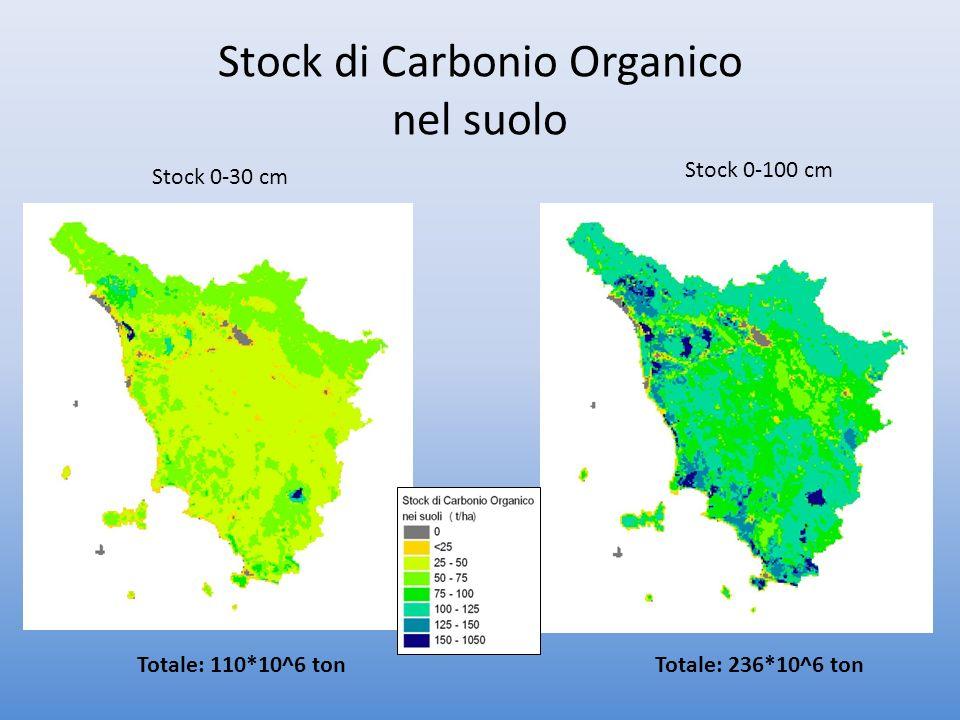 Stock di Carbonio Organico nel suolo