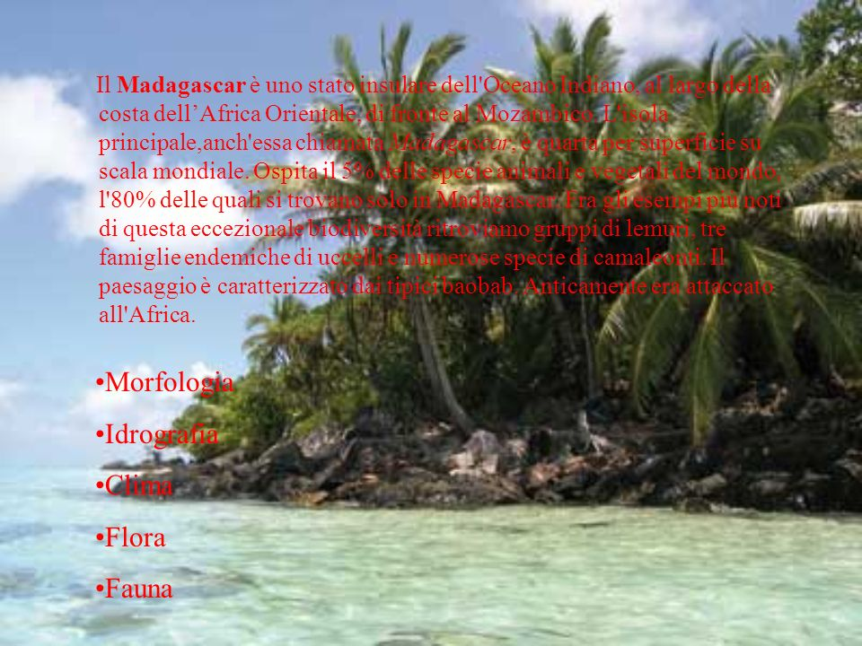 Morfologia Idrografia Clima Flora Fauna