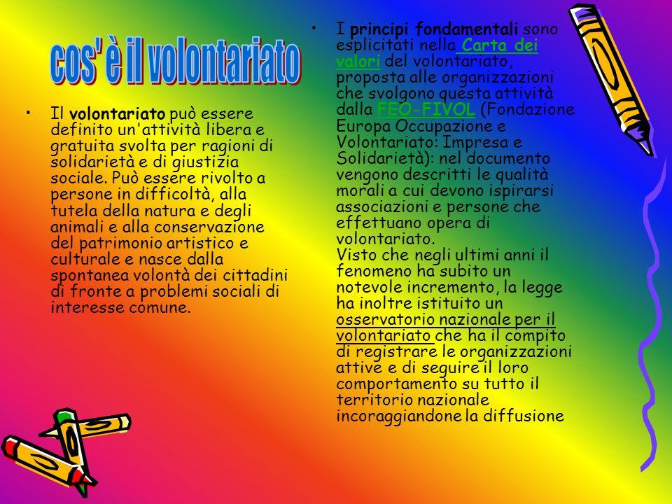 I principi fondamentali sono esplicitati nella Carta dei valori del volontariato, proposta alle organizzazioni che svolgono questa attività dalla FEO-FIVOL (Fondazione Europa Occupazione e Volontariato: Impresa e Solidarietà): nel documento vengono descritti le qualità morali a cui devono ispirarsi associazioni e persone che effettuano opera di volontariato. Visto che negli ultimi anni il fenomeno ha subito un notevole incremento, la legge ha inoltre istituito un osservatorio nazionale per il volontariato che ha il compito di registrare le organizzazioni attive e di seguire il loro comportamento su tutto il territorio nazionale incoraggiandone la diffusione