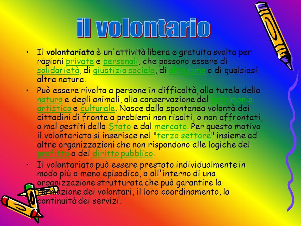 il volontario