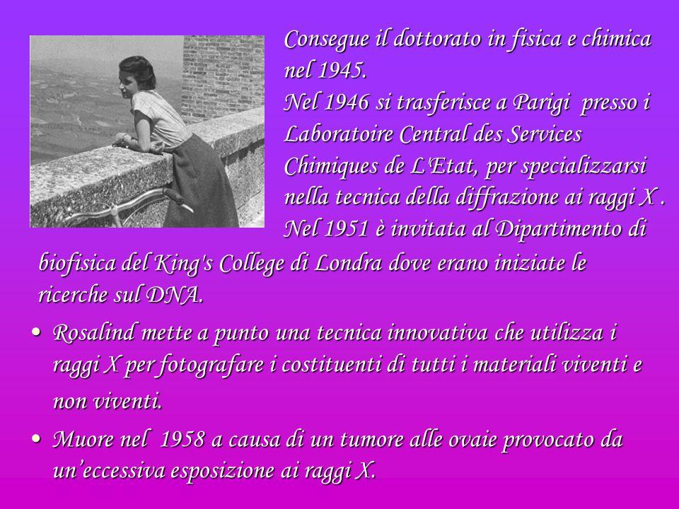 Consegue il dottorato in fisica e chimica nel 1945.