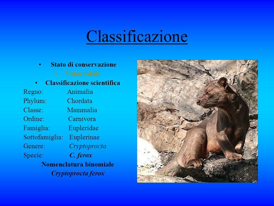 Classificazione Stato di conservazione Vulnerabile