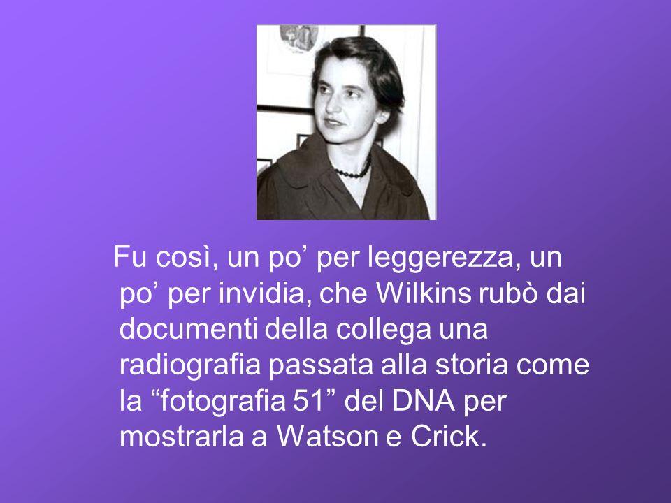 Fu così, un po' per leggerezza, un po' per invidia, che Wilkins rubò dai documenti della collega una radiografia passata alla storia come la fotografia 51 del DNA per mostrarla a Watson e Crick.