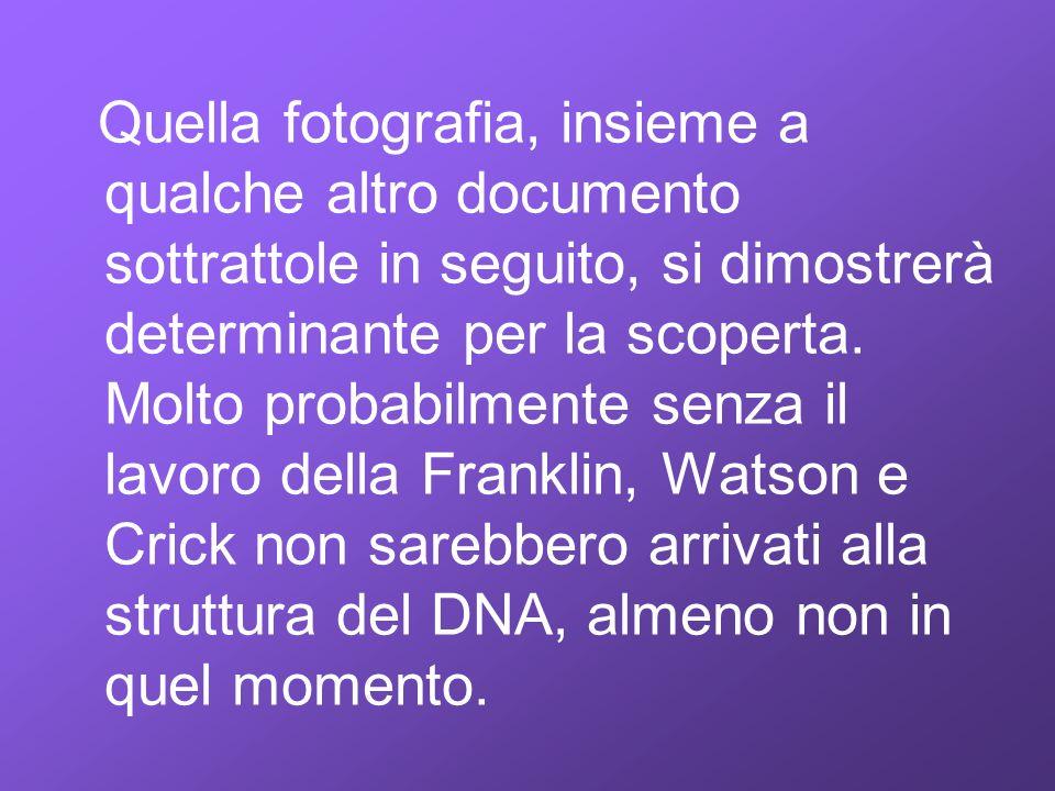 Quella fotografia, insieme a qualche altro documento sottrattole in seguito, si dimostrerà determinante per la scoperta.