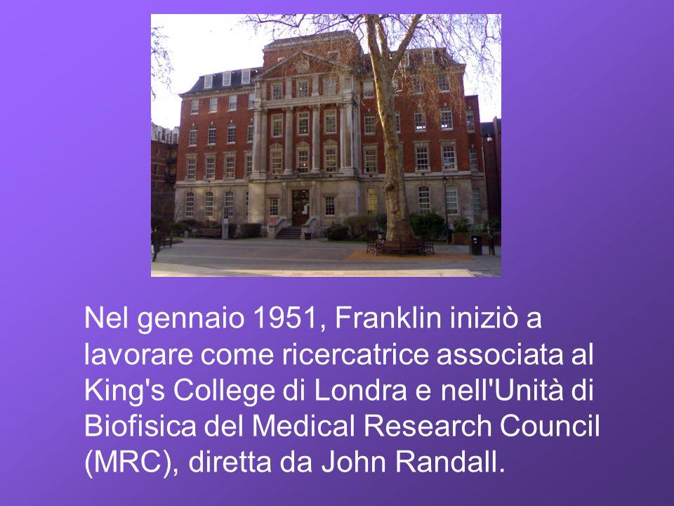 Nel gennaio 1951, Franklin iniziò a lavorare come ricercatrice associata al King s College di Londra e nell Unità di Biofisica del Medical Research Council (MRC), diretta da John Randall.