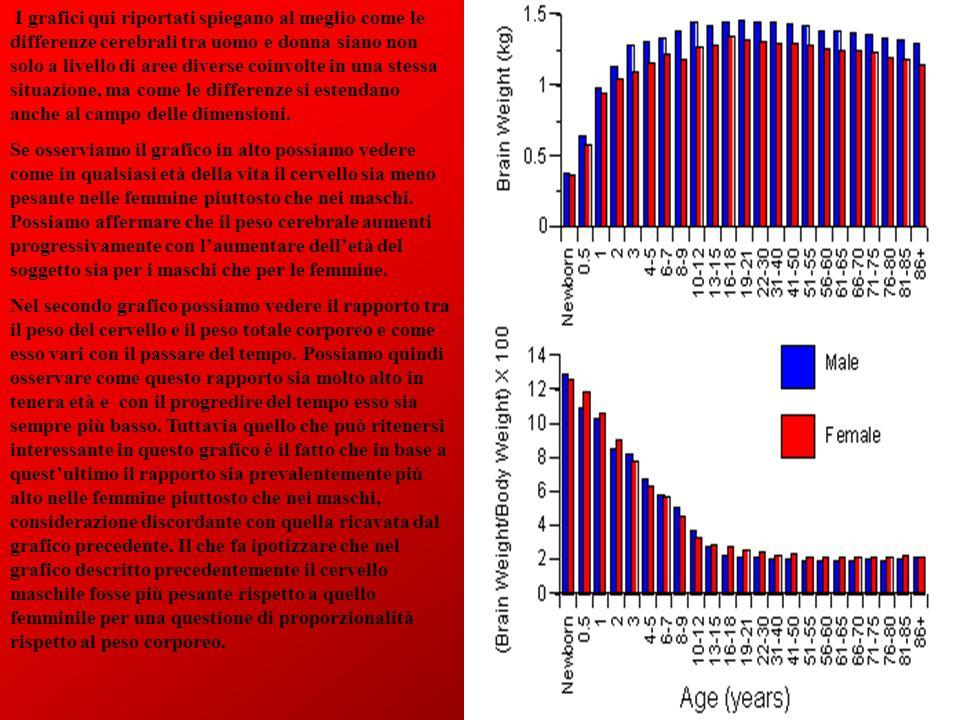 I grafici qui riportati spiegano al meglio come le differenze cerebrali tra uomo e donna siano non solo a livello di aree diverse coinvolte in una stessa situazione, ma come le differenze si estendano anche al campo delle dimensioni.