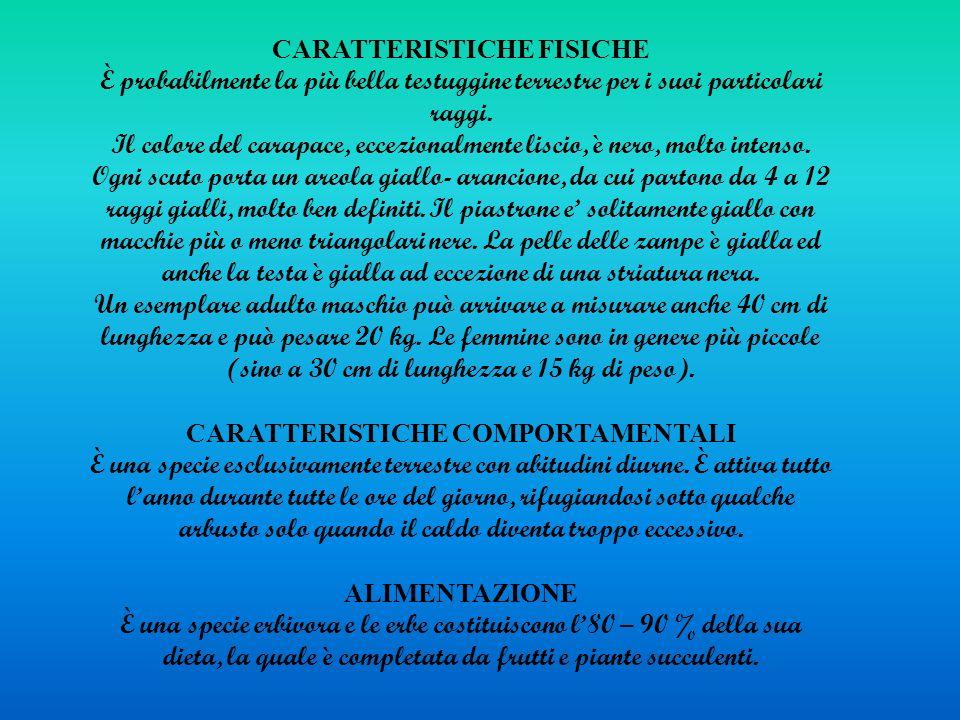 CARATTERISTICHE COMPORTAMENTALI