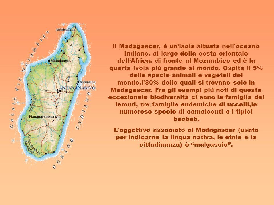 Il Madagascar, è un'isola situata nell'oceano Indiano, al largo della costa orientale dell'Africa, di fronte al Mozambico ed è la quarta isola più grande al mondo. Ospita il 5% delle specie animali e vegetali del mondo,l 80% delle quali si trovano solo in Madagascar. Fra gli esempi più noti di questa eccezionale biodiversità ci sono la famiglia dei lemuri, tre famiglie endemiche di uccelli,le numerose specie di camaleonti e i tipici baobab.