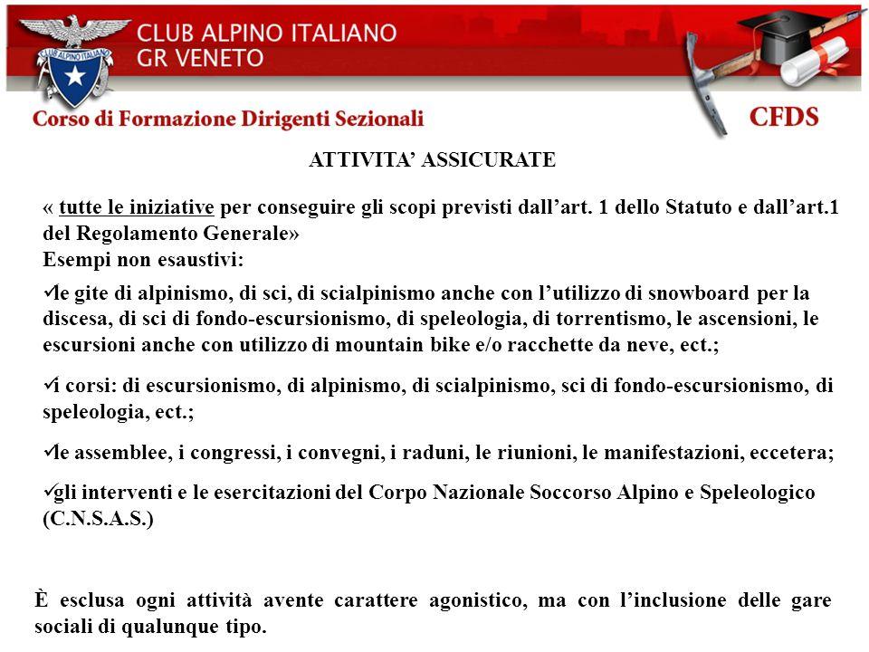 Club Alpino Italiano CAI- Bilancio d esercizio 2003. ATTIVITA' ASSICURATE.