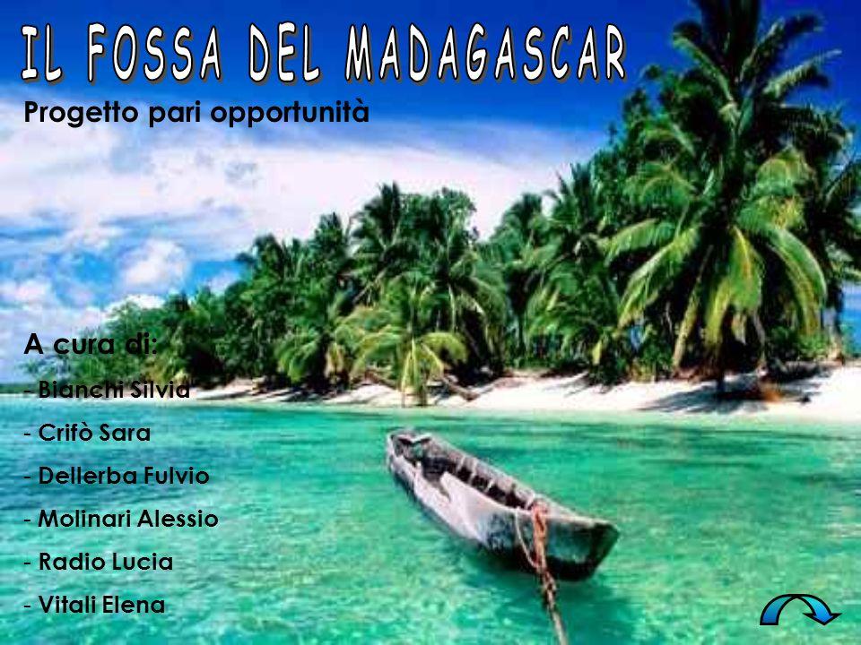 IL FOSSA DEL MADAGASCAR