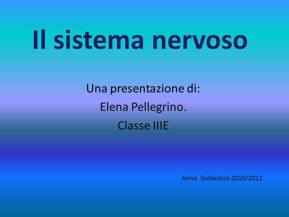 Una presentazione di: Elena Pellegrino. Classe IIIE