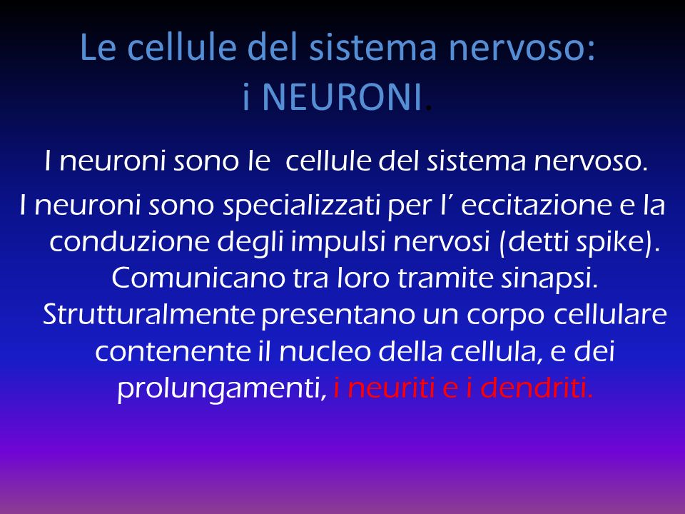 Le cellule del sistema nervoso: i NEURONI.