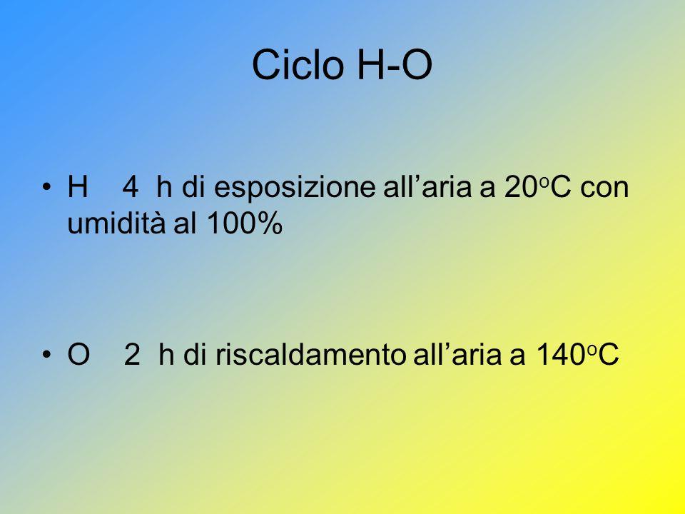 Ciclo H-O H 4 h di esposizione all'aria a 20oC con umidità al 100%