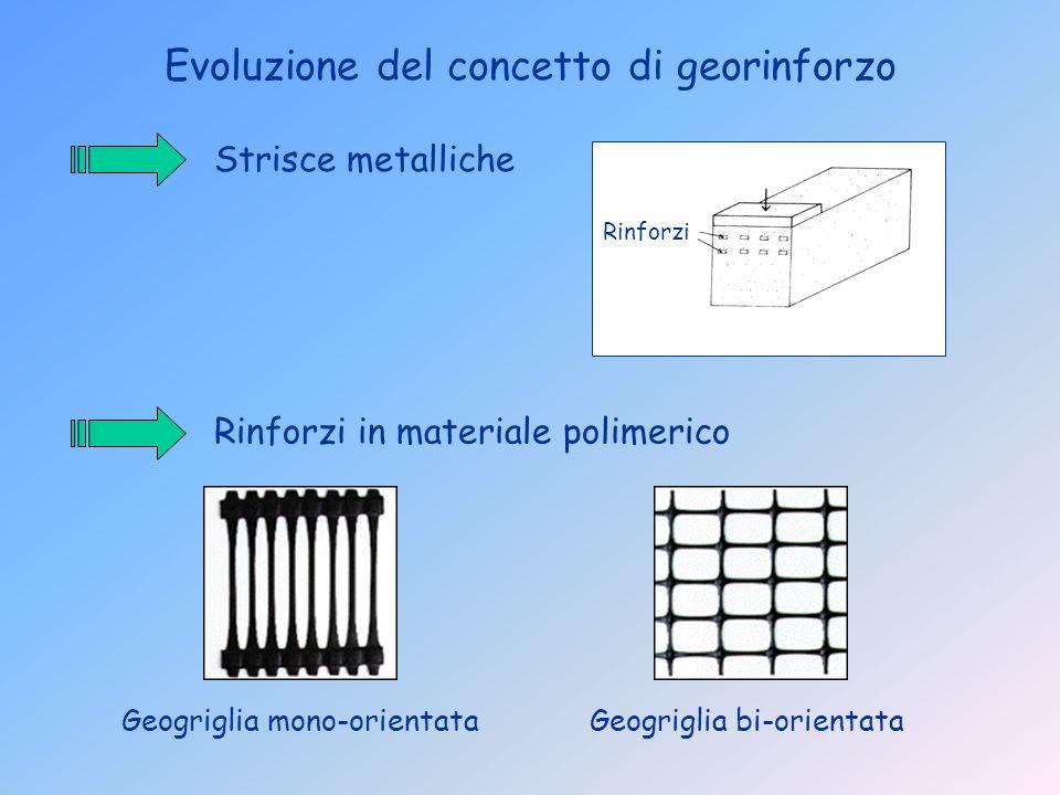 Evoluzione del concetto di georinforzo