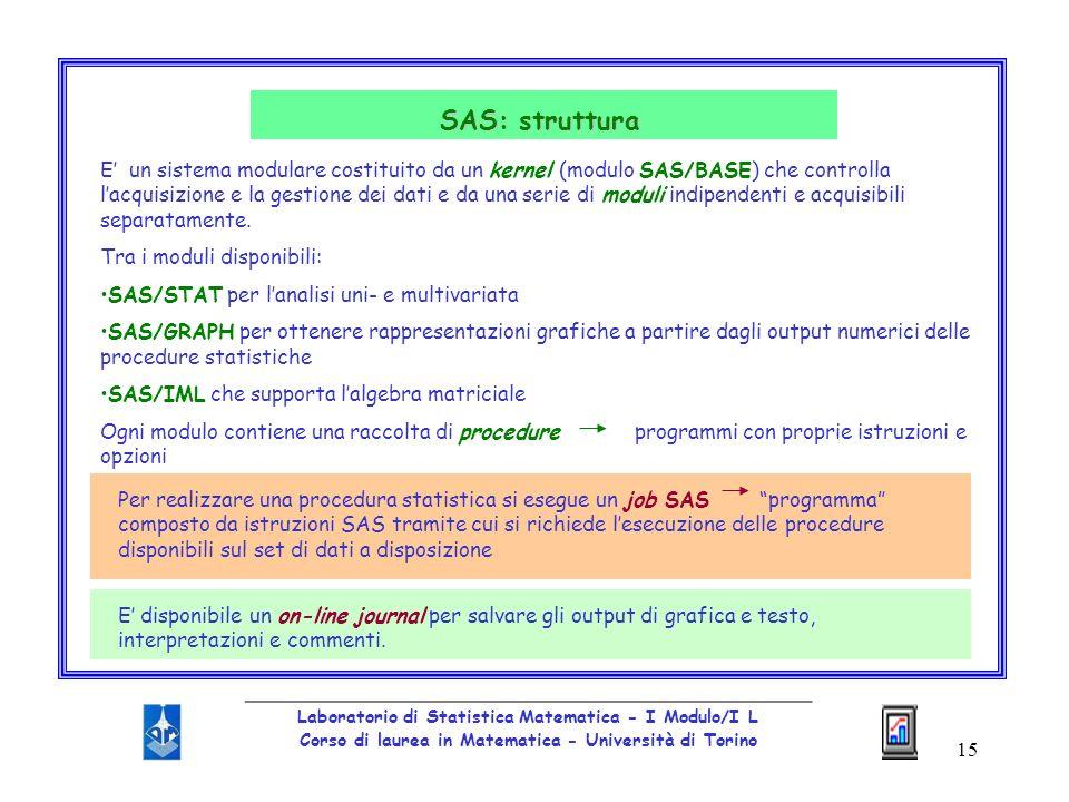 SAS: struttura