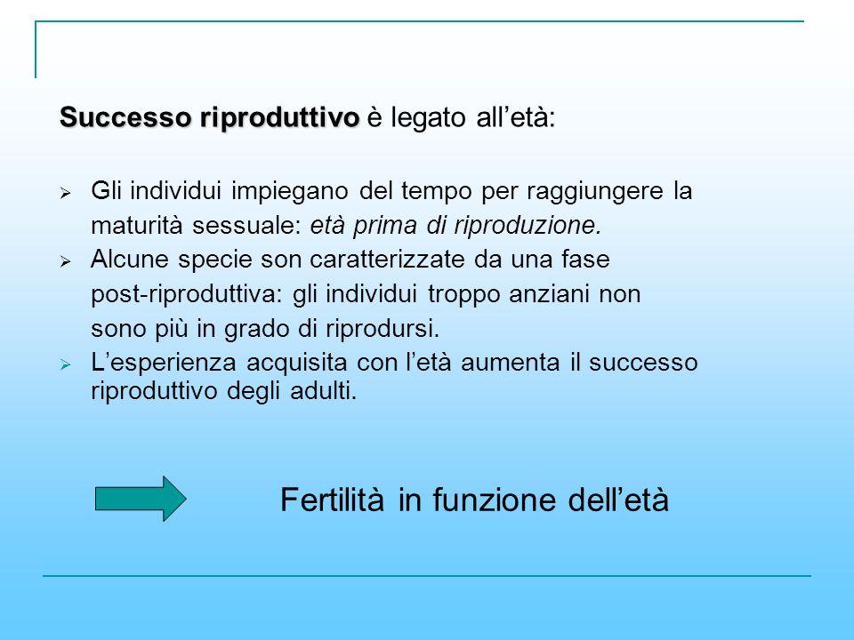 Fertilità in funzione dell'età