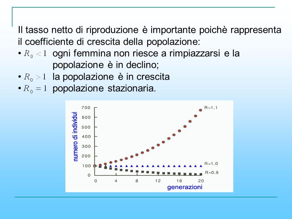 Il tasso netto di riproduzione è importante poichè rappresenta