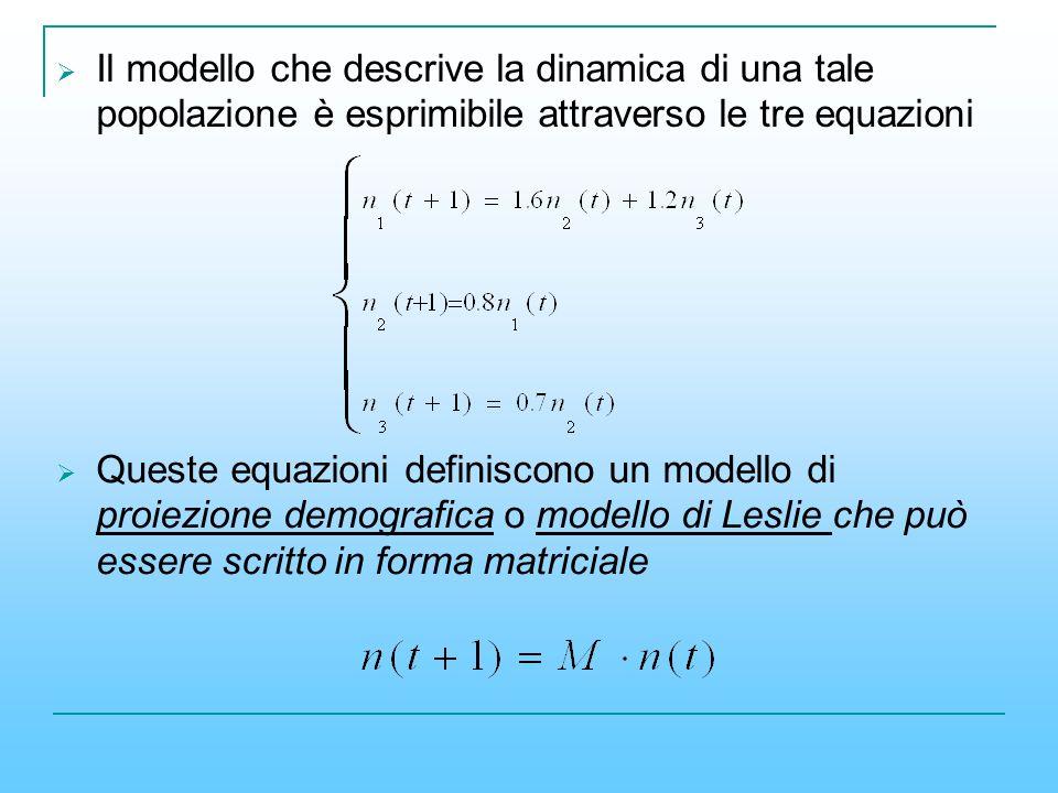 Il modello che descrive la dinamica di una tale popolazione è esprimibile attraverso le tre equazioni