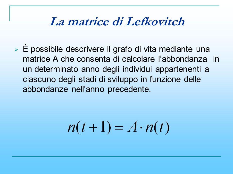 La matrice di Lefkovitch