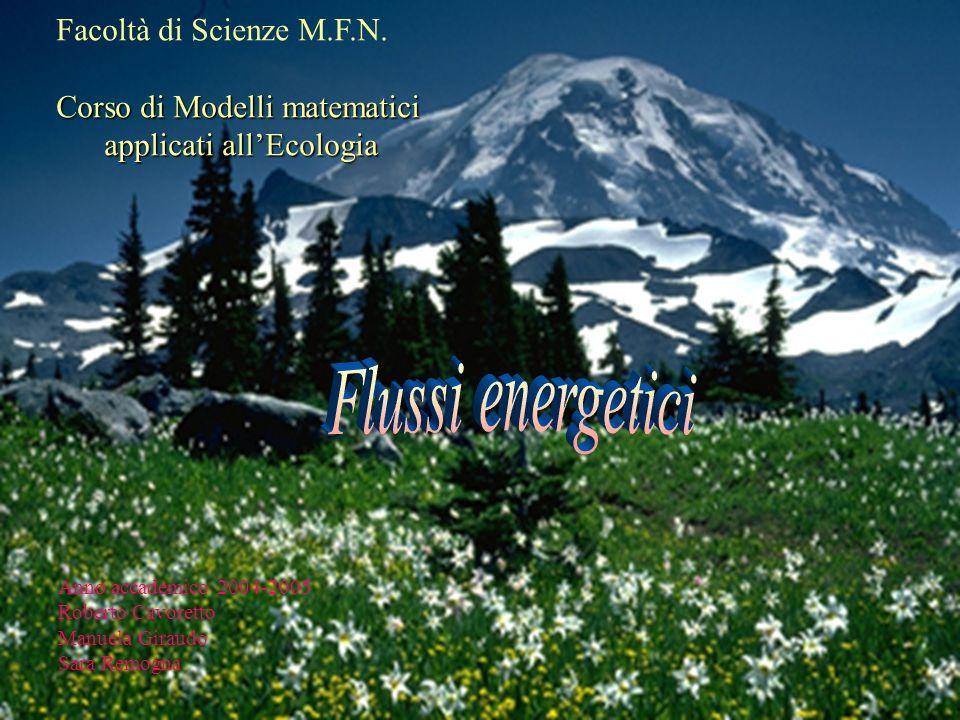 Flussi energetici Facoltà di Scienze M.F.N.