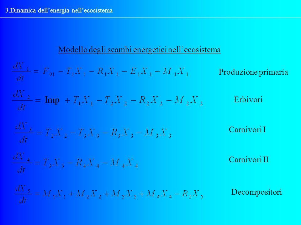 Modello degli scambi energetici nell'ecosistema