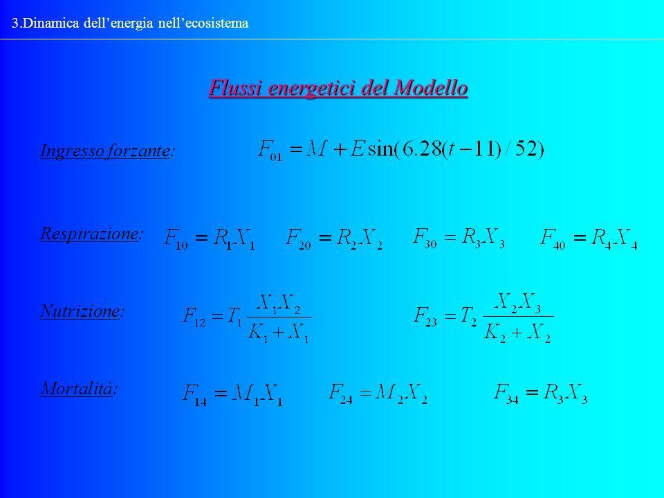 Flussi energetici del Modello