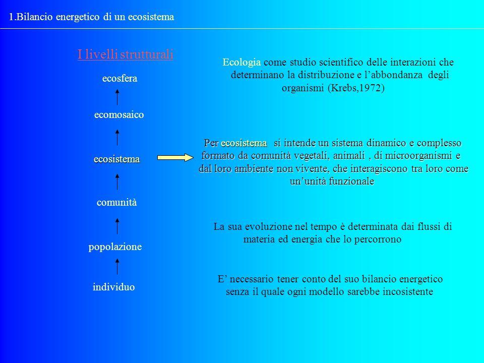 I livelli strutturali 1.Bilancio energetico di un ecosistema