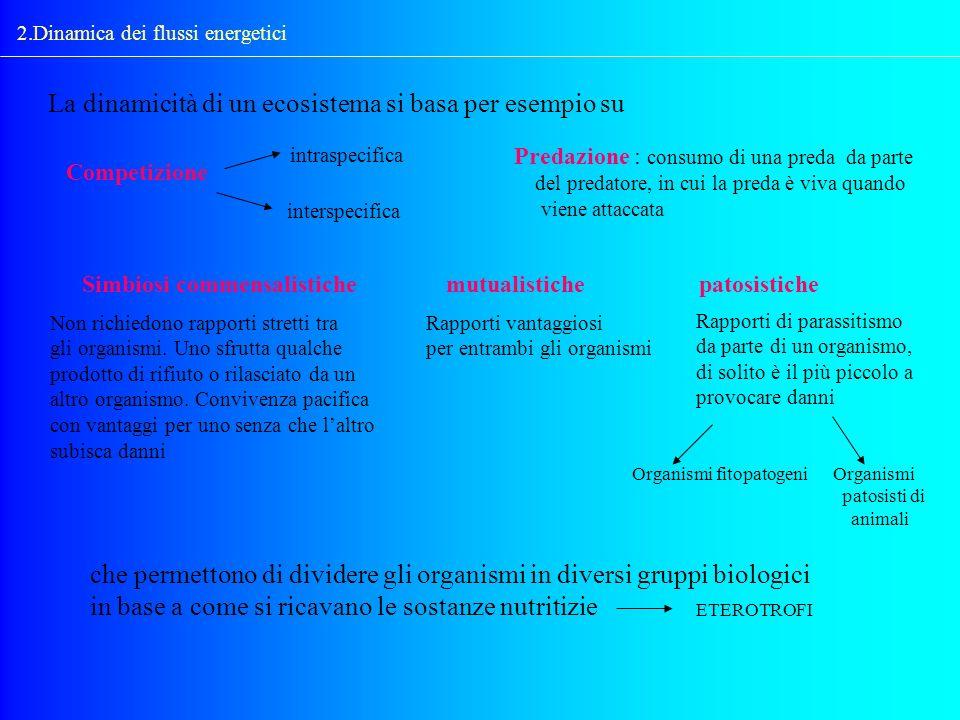 La dinamicità di un ecosistema si basa per esempio su