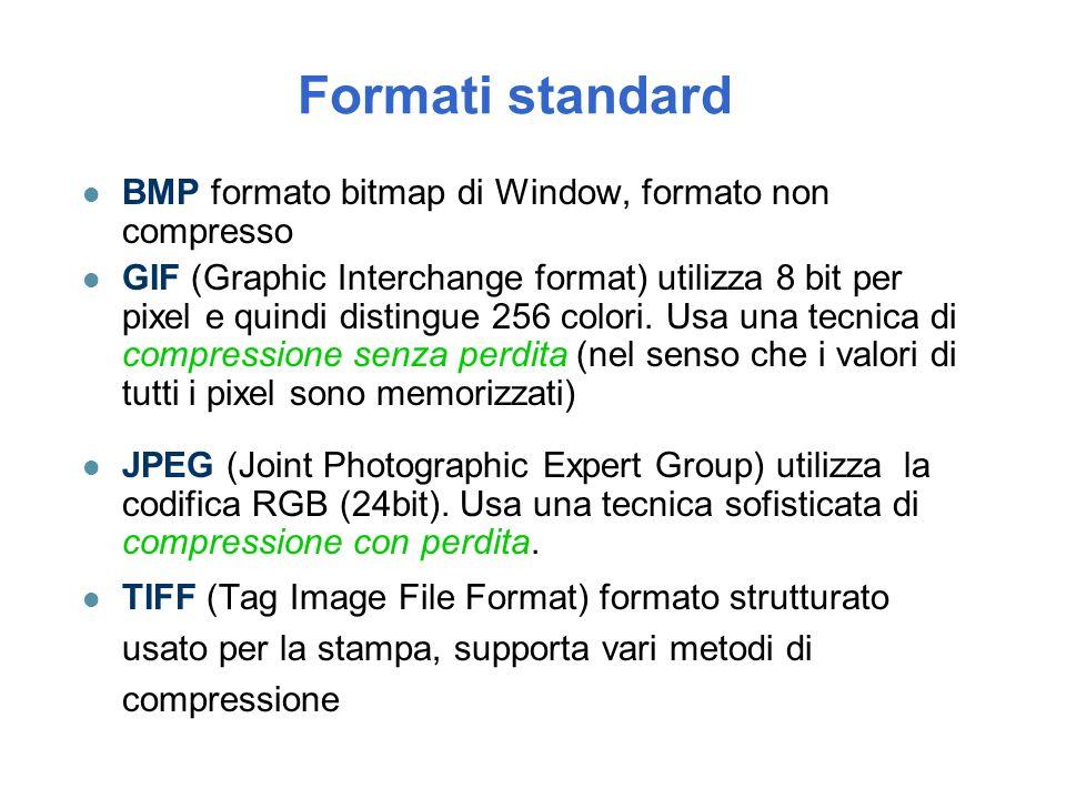 Formati standard BMP formato bitmap di Window, formato non compresso