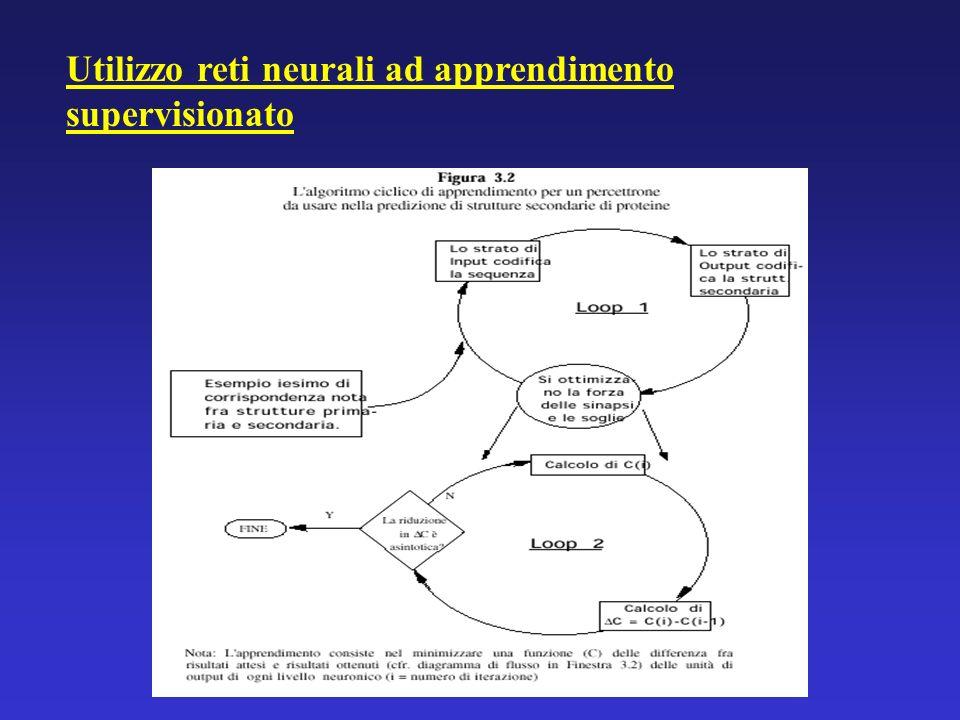 Utilizzo reti neurali ad apprendimento supervisionato