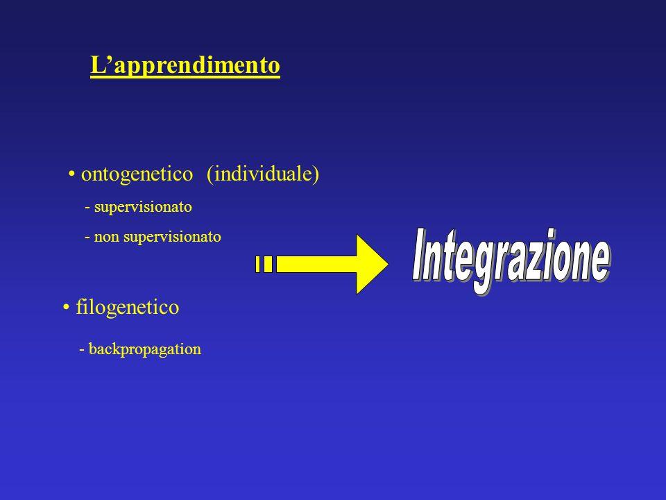L'apprendimento Integrazione ontogenetico (individuale) filogenetico
