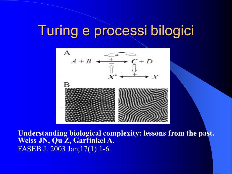Turing e processi bilogici