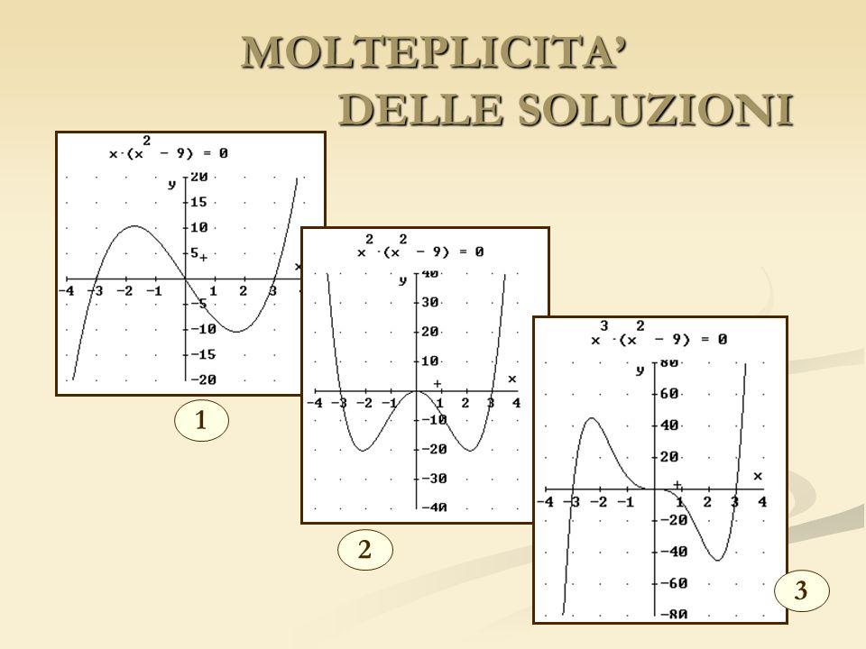 MOLTEPLICITA' DELLE SOLUZIONI