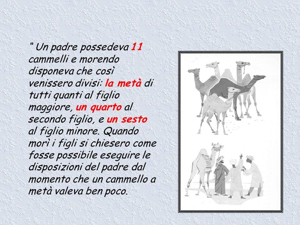Un padre possedeva 11 cammelli e morendo disponeva che così venissero divisi: la metà di tutti quanti al figlio maggiore, un quarto al secondo figlio, e un sesto al figlio minore.