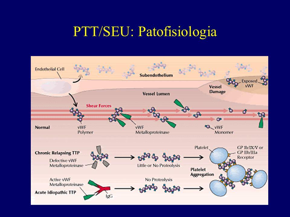 PTT/SEU: Patofisiologia