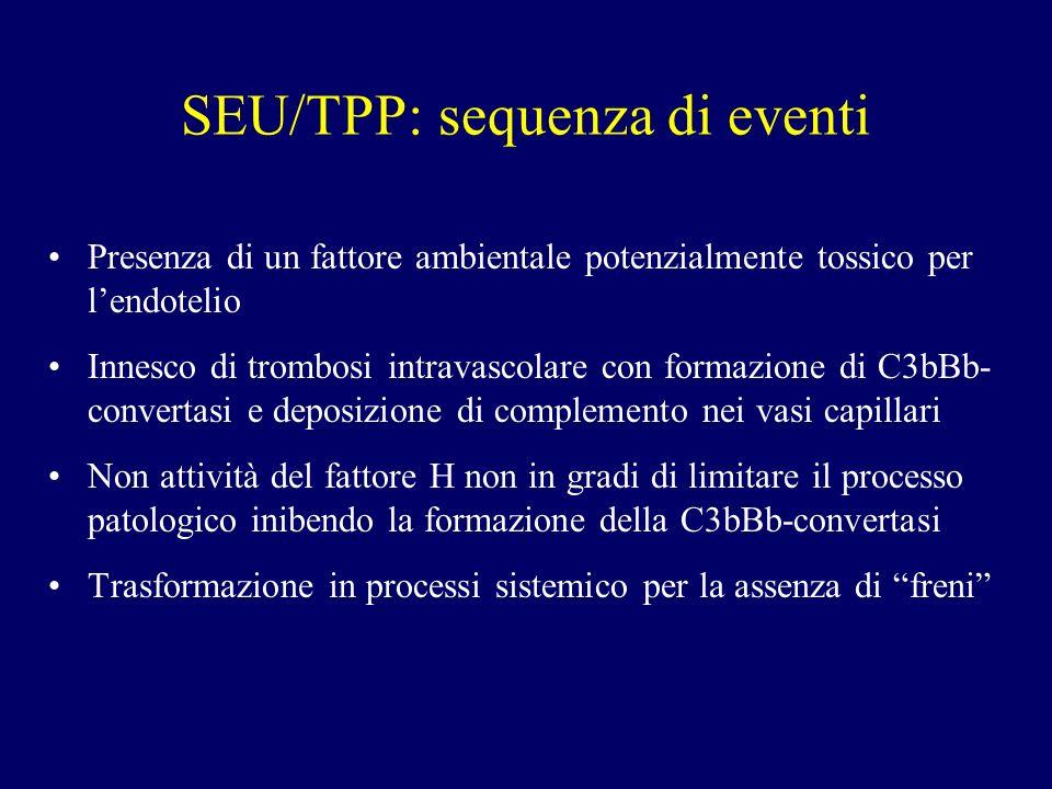 SEU/TPP: sequenza di eventi