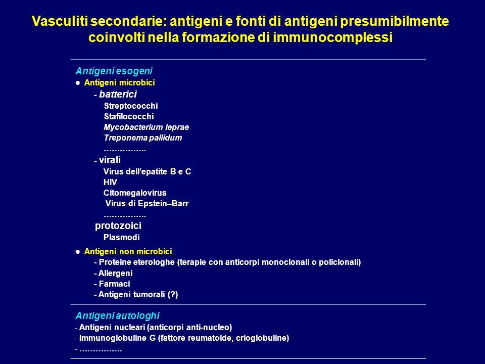 Vasculiti secondarie: antigeni e fonti di antigeni presumibilmente coinvolti nella formazione di immunocomplessi