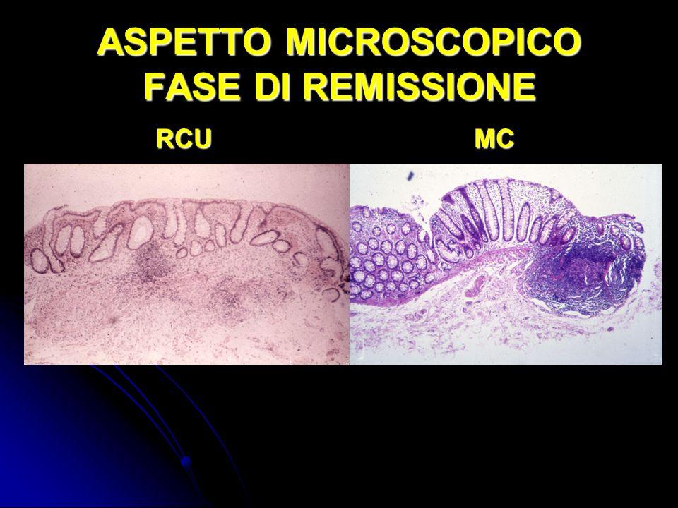 ASPETTO MICROSCOPICO FASE DI REMISSIONE