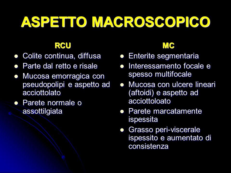 ASPETTO MACROSCOPICO RCU Colite continua, diffusa