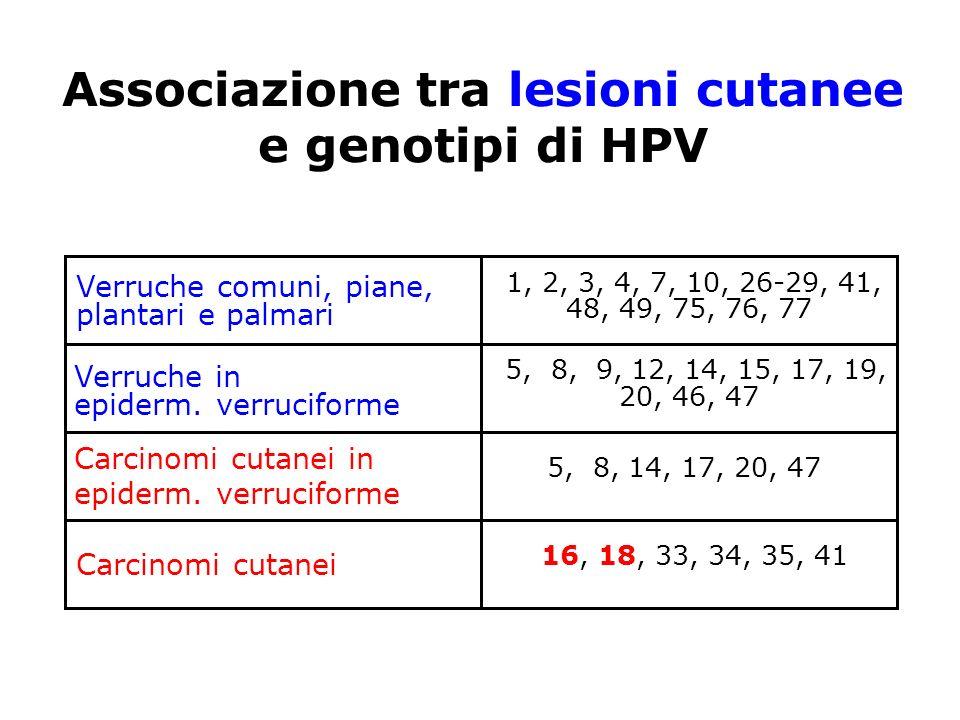 Associazione tra lesioni cutanee e genotipi di HPV