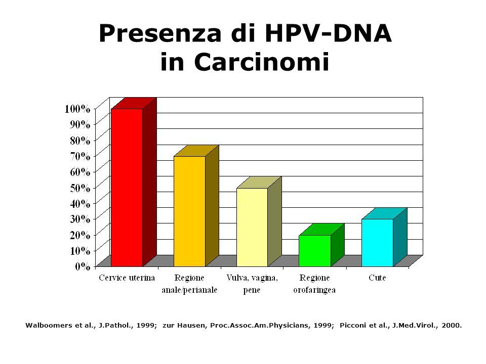 Presenza di HPV-DNA in Carcinomi