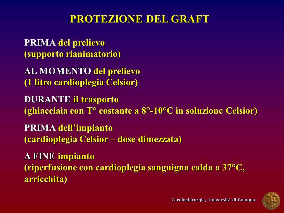 PROTEZIONE DEL GRAFT PRIMA del prelievo (supporto rianimatorio)