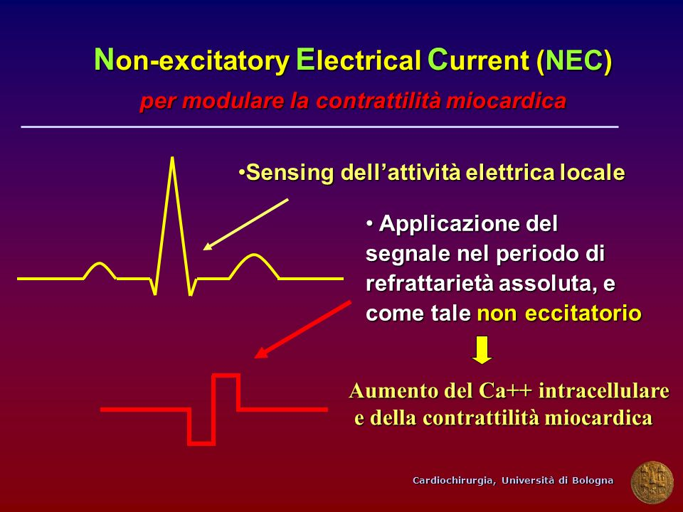 Non-excitatory Electrical Current (NEC)