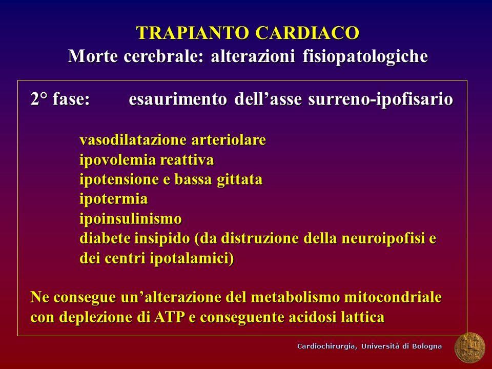 Morte cerebrale: alterazioni fisiopatologiche